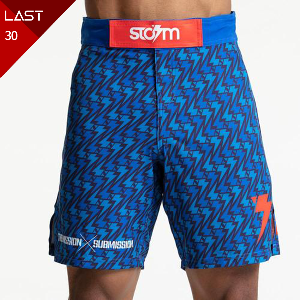 스톰 파이트쇼츠 - Storm 'Standard Issue' Board Shorts - Blue/Blue
